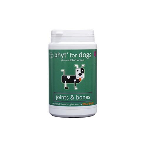 Joints & Bones